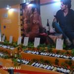 2013年随时随意波尔多葡萄酒品鉴会,说明会和媒体发布会