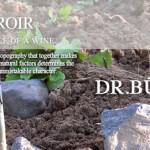 阁乐葡酒业-布尔克林-吴尔福酒庄晚宴/Globus Wine- DR.BURKLIN-WOLF WINE DINNER