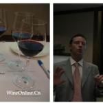 北京希尔顿酒店第八届国际美食与葡萄酒节