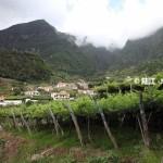 """2014.08.24 万欧兰葡萄酒俱乐部系列118,""""葡萄牙马德拉Madeira葡萄酒课程"""""""