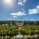 2014/15财年澳大利亚葡萄酒出口总量及总额齐上升