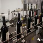 2016年1月葡萄酒市场进口情况