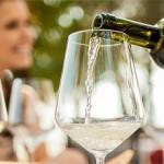 葡萄酒投资诈骗,拿投资人的钱周游世界