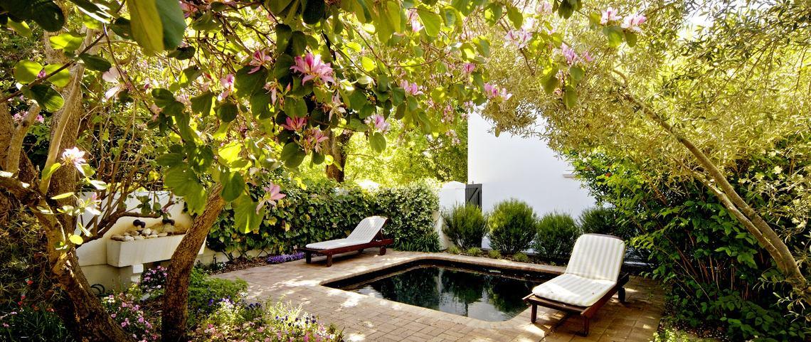 vreugde-garden.jpg.1140x481_0_91_6499