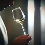 如何提高品酒的能力