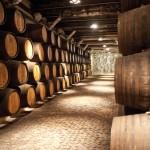 2015年份波尔多期酒品鉴预备战役已结束