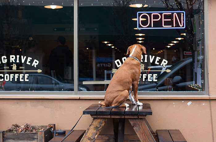5. Dog_River_Coffee-700x461
