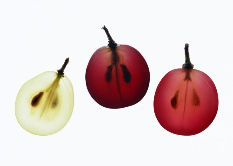 #一分钟课堂#食用葡萄VS酿酒葡萄