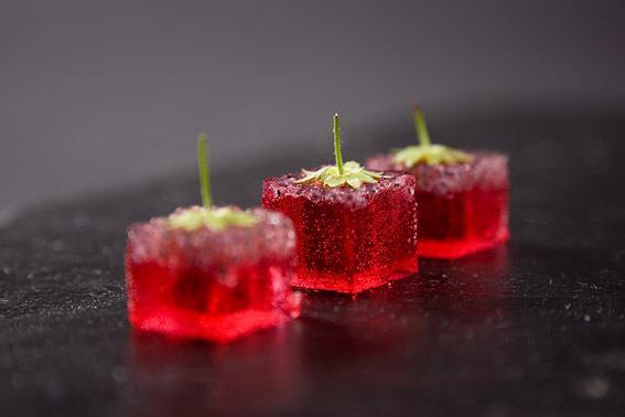 分子料理解惑篇:它贵么好吃么吃的饱么