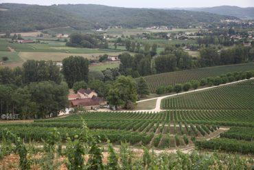 法国卡奥Cahors葡萄酒之旅-酒庄篇