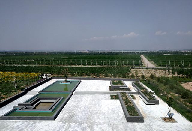 【走访新宁夏 见证新发展】贺兰山东麓葡萄酒力争2022年实现综合产值千亿元