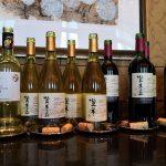三得利登美之丘酒庄启动中国新品首发之旅